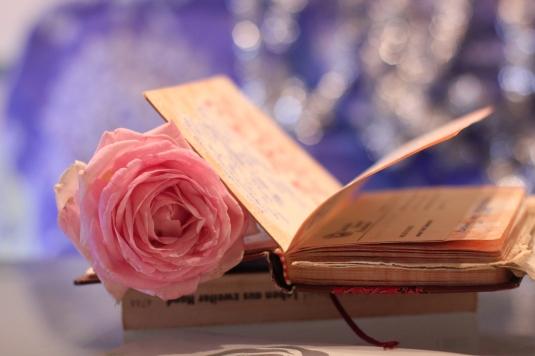 dear-diary-307512