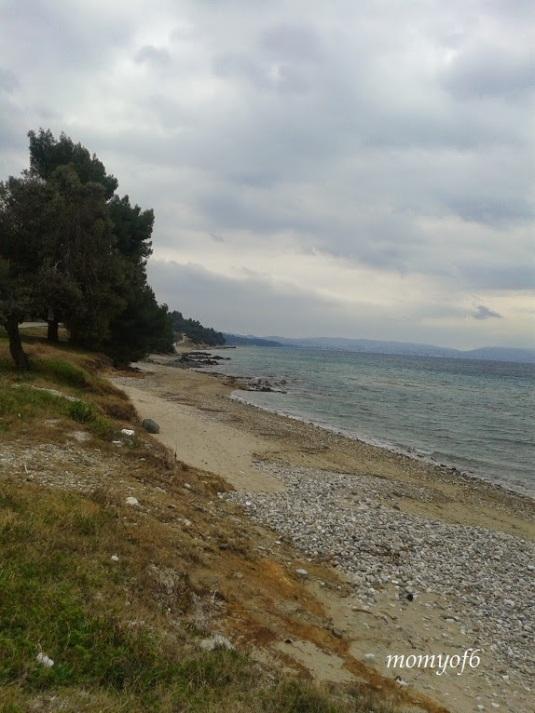 θάλασσα 10