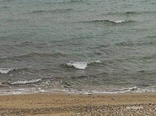 θάλασσα 13