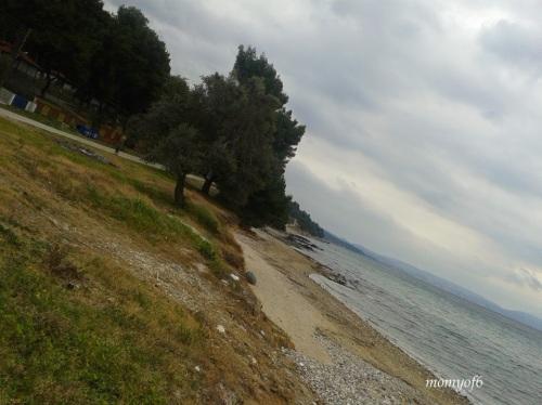 θάλασσα 2