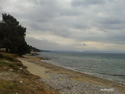 θάλασσα 8