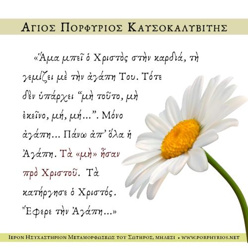 osios-porfyrios-kafsokalyvitis-ta-mh