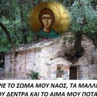 Μια εκδρομή- προσκύνημα στην Αγία Θεοδώρα του Βάστα